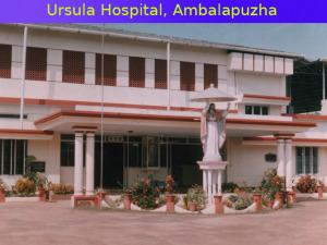 Ambalapzha