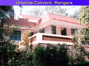 Mangara